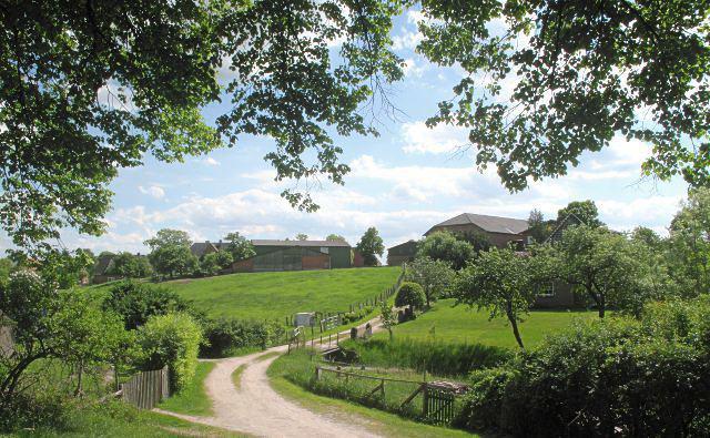 Im Dorf Bissee | Waldspaziergang.org