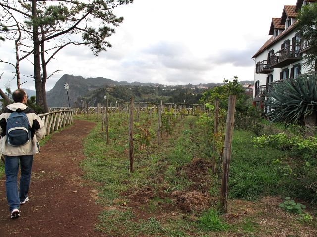 Wanderweg entlang der Quinta | Waldspaziergang.org