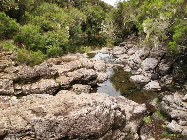 Flussbett Ribeira Grande | Waldspaziergang.org