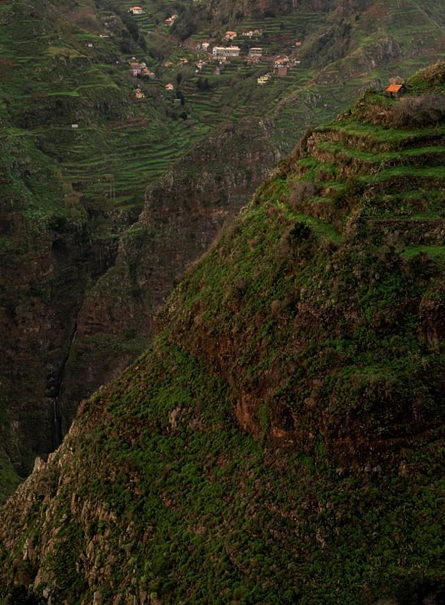 Bergiges Madeira | Waldspaziergang.org