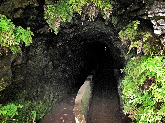 Espigao Tunnel | Waldspaziergang.org