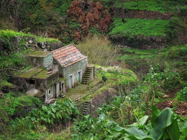 Altes Haus auf Madeira | Waldspaziergang.org