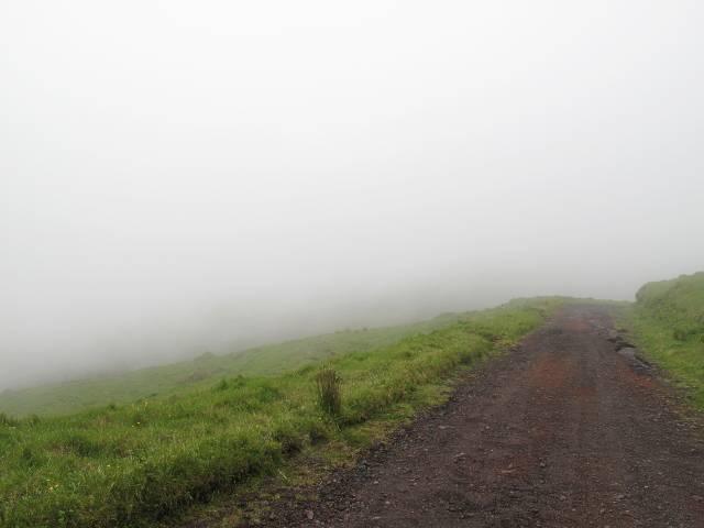 Rückweg Pico da Esperanca | Waldspaziergang.org